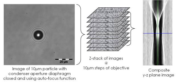 Image in optical microscope of polystrene particle in water (left), series of images at different positions of microscope objective (centre) and artificial image created from greyscale data along centre-lines of image series (right).