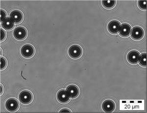 Out-of-focus image from optical microscope of 10 micron diameter polystrene spheres in water