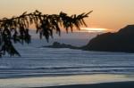 Decorative photograph of the Oregon coast